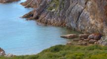 Marine Landscape 4