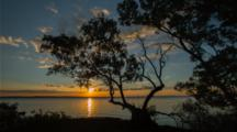 Sunset Over Mangrove Time Lapse
