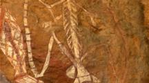 Kakadu Aboriginal Art Edited Video