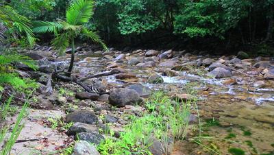 Platypus environment