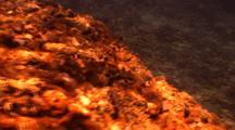 Sting Ray Hunting With Jackfish