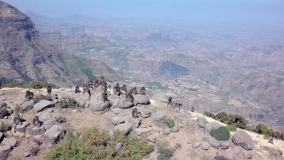Gelada baboons on mountain peak, semi circle aerial
