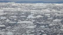 Ice Floes In Ocean Water
