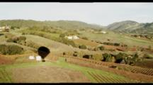 Long Shot, Aerial Fly Over Napa Valley Vineyards. Shot From A Hot Air Balloon, Some Wobble. Beautiful, Scenic, Vineyards.
