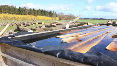 Oak planks for the construction of the Ladby viking ship are kept under water to avoid the wood to dry out before use