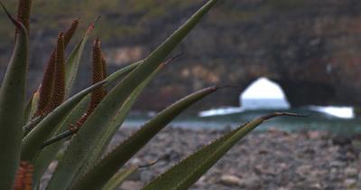 Hole in the Wall - Transkei Coast
