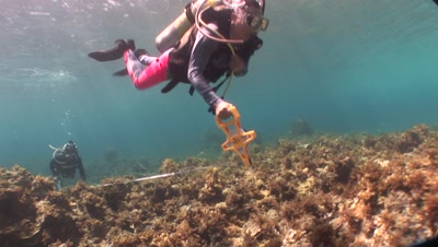 Ocean Science / Research Stock Footage