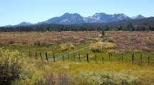 ID, Sawtooth National Recreation Area, Meadow And Sawtooth Mountains