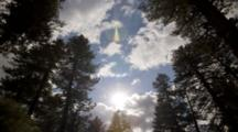 Clouds Passing In Front Of Sun In A Forest