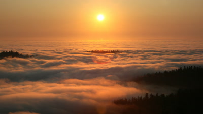 Sun Setting into Pacific Ocean Fog in Redwood NP,CA