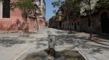 A Fountain In Venice Street