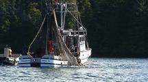 Commercial Fishing. Purse Seiner Closing The Net.