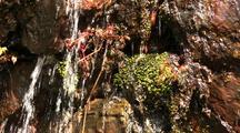 Water Falling Over Moss & Rocks
