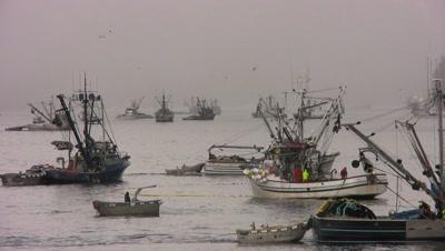 Ocean Fishing Stock Footage