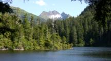 Alpine Scenery With Lake And Coniferous Forest