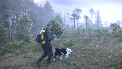Hiker/Hunter Enters A Muskeg With His Dog