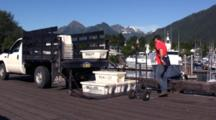 Loading Boxes Of Fish