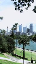 Overlook View Of Skyline Of Sydney Cbd Across Harbor