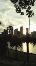 Skyline Of Sydney Cbd Across Harbor, At Sunset