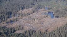 Cineflex Aerial Of Clearcut Logging On Afognak Island Near Kodiak Island Alaska