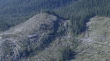 Cineflex Aerial Of Wrangell Alaska Clearcut