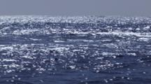 Stabilized Cineflex shots of small sport fishing boat on pacific ocean san francisco near farallon islands