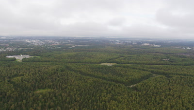 Aerials Of Spruce Forest on edge of city