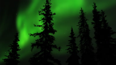 Northern Lights Over Borreal Forest Aurora Green Timelapse Arctic Alaska Toursim