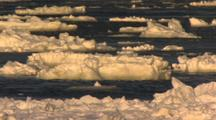 Ice Floes Drift On Open Ocean Current