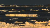 Sea Ice Adrift On Open Ocean Golden Light
