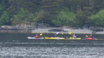 Colorful Kayakers Enjoying The Day On The Alaska Coast