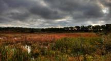 4k Ultrahd Controlled Pan Of A Marsh Area