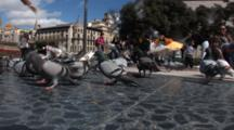 Hand Held Shot On A Busy Street In Barcelona Spain, The Alain Afflelou Plaza CataluñA, With Pigeons