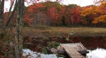 Maine Scenic In Fall Colors - Shot Pans Accross Stream To A Warning Sign, Very Wide