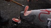 Tsukiji Fish Market, Tokyo - Close Uo Shot Of Frozen Tuna Being Inspected On Auction Floor