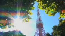 Tokyo, Japan - The Tokyo Tower In The Shiba Neighborhood, Framed By Trees With Sunburst