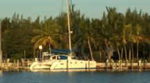 Large Catamaran At Dock In Safe Harbor, Warm Morning Light, Palm Trees In Background