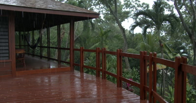 Rain falling in tropical rain forrest in central america