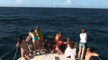 Passengers On Bow Of Boat Watch Atlantic Spotted Dolphins (Stenella Frontallis) Leap In Choppy Weather