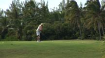 Golf Course Green In The Tropics With Golfer Playing A Game, Swings A Club