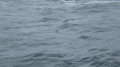 Stormy Seas, Waves, Ocean Surface, 4k