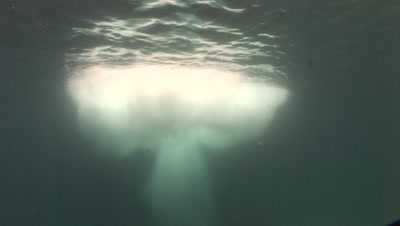 Underwater Shot Immediately Following Dynamite Fishing Showing Blast Mushroom Cloud.  Philippines.