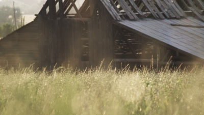 Static shot of wheat field with lens flare.
