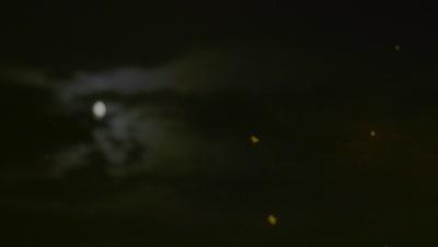 Mayflies swarming in the moonlight