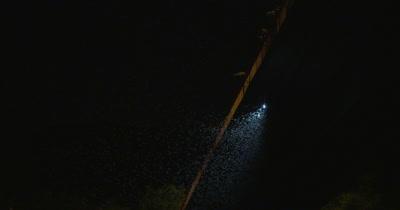 Mayflies swarming over the Danube bridge