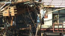 Debris Hangs In Tree After Tsunami In Japan