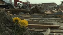 Japan Tsunami Aftermath - Flowers Stand Amidst Destruction In Rikuzentakata City