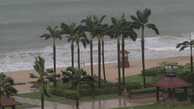 Large Waves Hit Beach And Hurricane Winds Lash Palm Trees