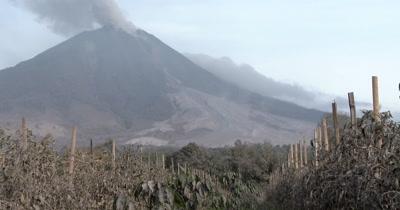 Volcano Erupts Ash Cloud Damaged Crops Agriculture