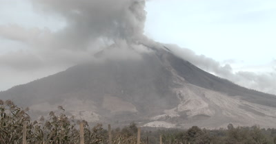 Volcano Erupts Ash Cloud Damaged Crops Agriculture